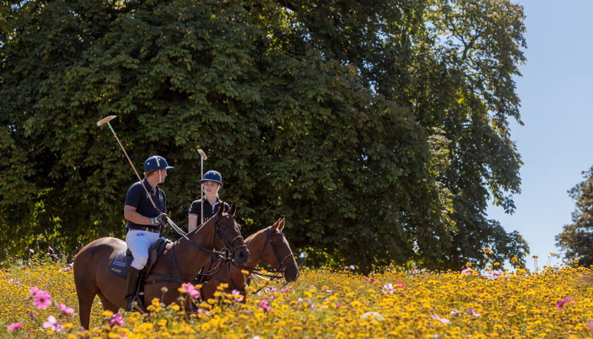Coworth Park Polo Experience