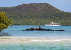 Need Your Own Space? Buyout Your Own Yacht, Island, Villa or Resort